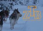 Logo Thorsten Zeitnitz Band